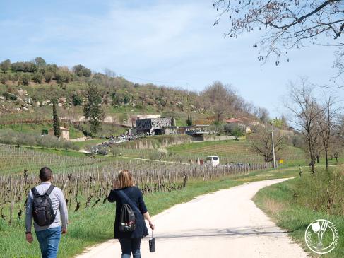 Sweet Wine and Walk 2 (photo by SZ)