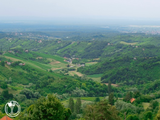 Vinarija Ivančić, pogled s kleti (photo by SZ)